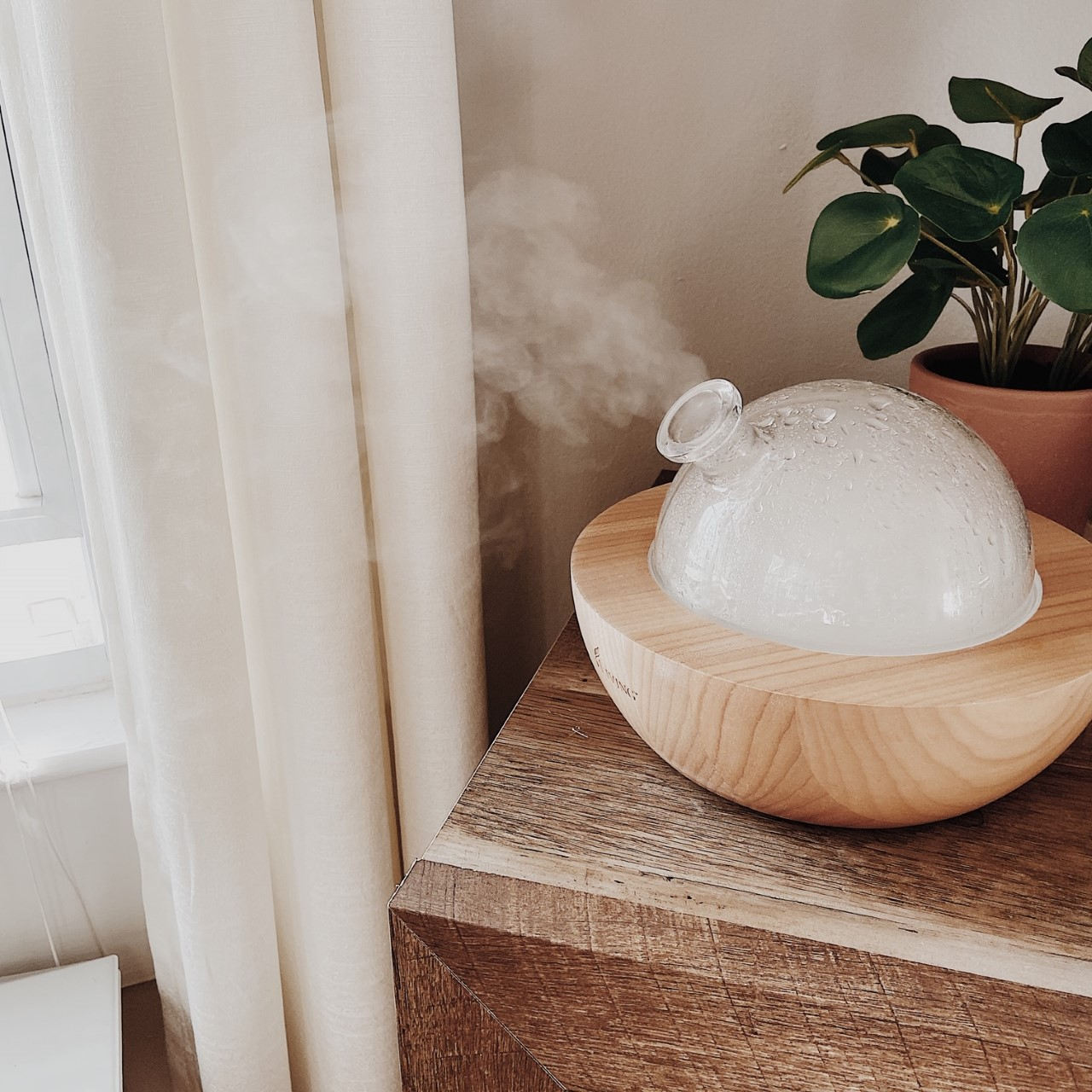 Young Living Aria Diffuser with essential oils Whimsy + Wellness