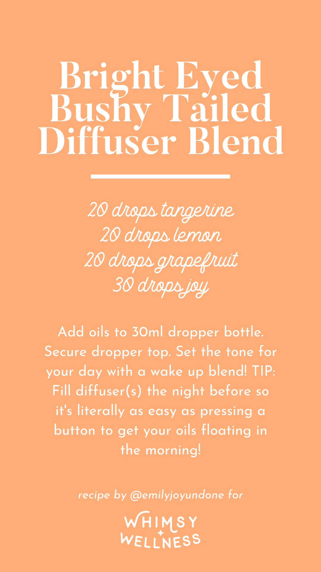 Bright Eyed Bushy Tailed Diffuser Blend using Whimsy + Wellness Wild Child Set and Young Living Essential Oils